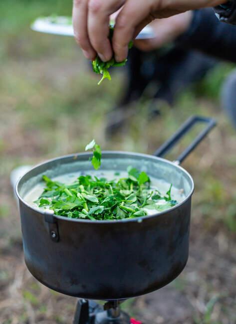 Donna che cucina zuppa su un fornello da campeggio, Stati Uniti — Foto stock