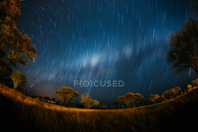 Star trails and the Milky Way, Erindi Game Park, Namibia — Stock Photo