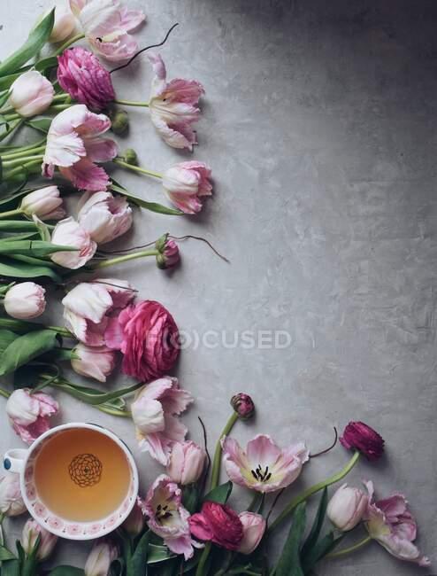 Tulipanes rosados con ranúnculo y taza de té sobre fondo claro - foto de stock