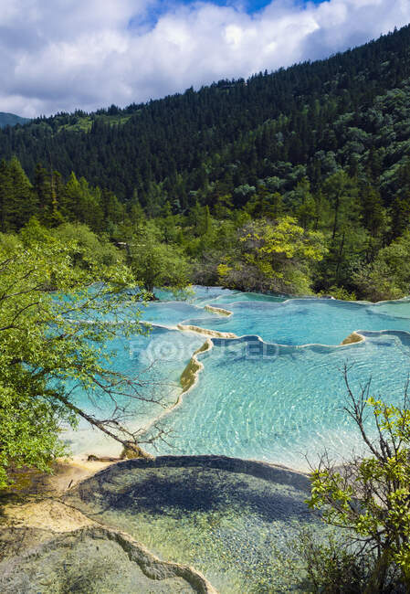 Hermoso paisaje con río y bosque - foto de stock