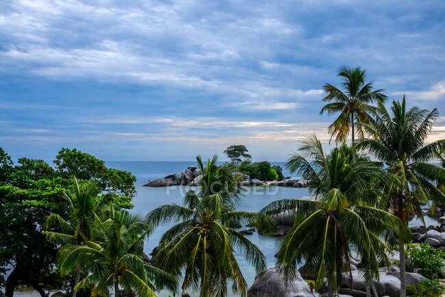 Palme sulla spiaggia, Isola di Lengkuas — Foto stock