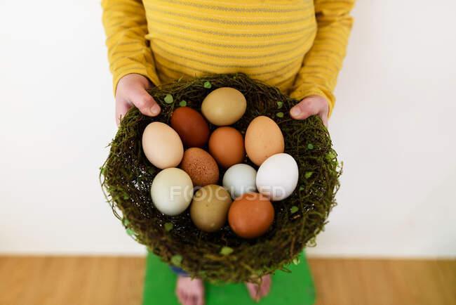 Primo piano di un ragazzo che tiene un nido con uova fresche — Foto stock