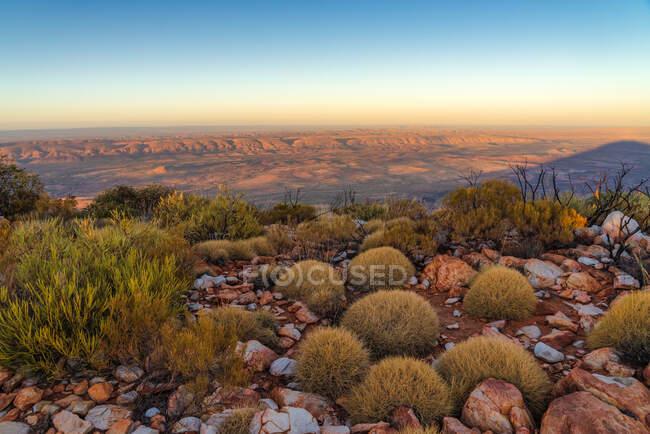 Monte Sonder cumbre y plantas spinifex al amanecer, Parque Nacional West MacDonnell, Territorio del Norte, Australia - foto de stock