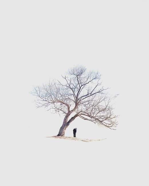 Uomo in piedi sotto un albero, Corea del Sud — Foto stock
