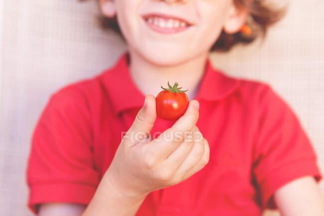 Smiling boy holding a tomato — Stock Photo