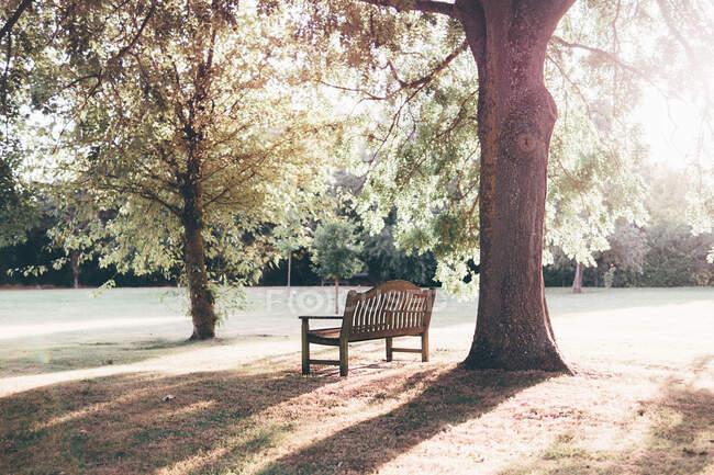 Banco vazio em um parque — Fotografia de Stock