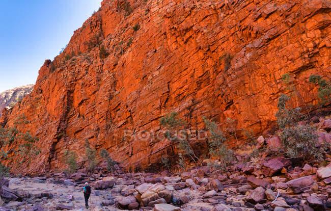 Senderismo femenino en Ormiston Gorge, Parque Nacional West MacDonnell, Territorio del Norte, Australia - foto de stock
