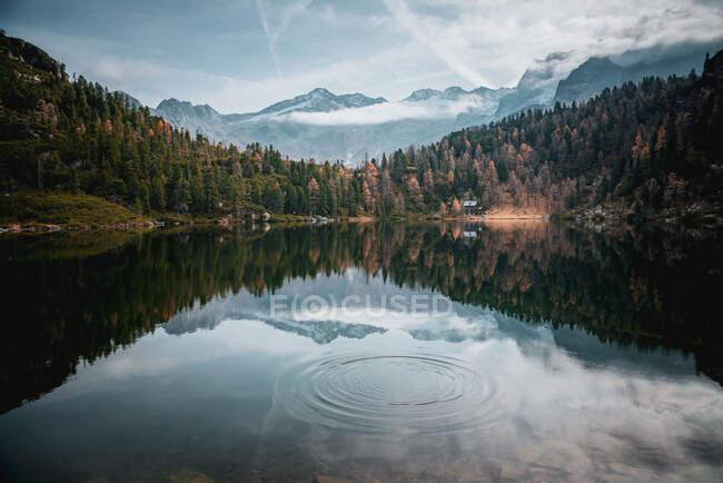 Cabaña en el bosque de Reedsee en los Alpes austríacos, Bad Gastein, Salzburgo, Austria - foto de stock