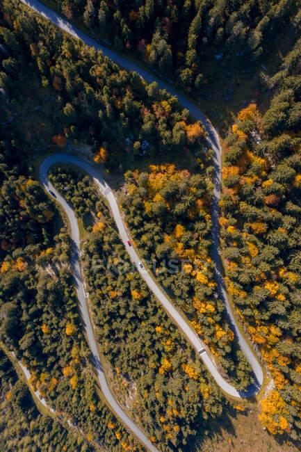 Vista aérea de los coches que conducen a lo largo de un camino sinuoso a través de un bosque de otoño, Salzburgo, Austria - foto de stock