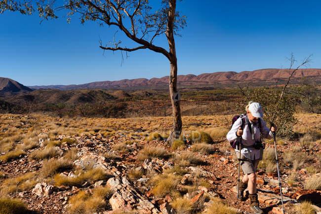 Woman Hiking on the Larapinta Trail, West MacDonnell National Park, Território do Norte, Austrália — Fotografia de Stock