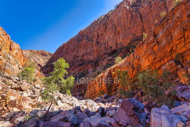Caminhadas em Ormiston Gorge, West MacDonnell National Park, Território do Norte, Austrália — Fotografia de Stock