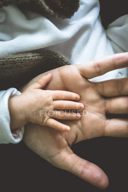 Primer plano de la mano de un bebé en la mano de un padre - foto de stock