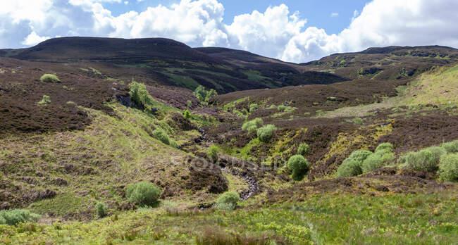 Rural landscape, Rob Roy, Way, Écosse, Royaume-Uni — Photo de stock