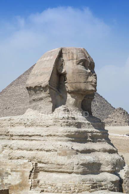 Вигляд великого сфінкса (Гіза) поблизу Каїра (Єгипет). — стокове фото