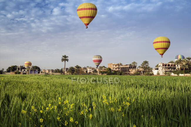 Hot air balloons flying over city, Luxor, Egypt — стокове фото