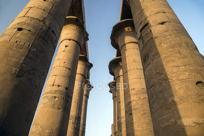The Colonnade of Amenhotep III, Temple of Luxor, Luxor, Egypt — Stock Photo