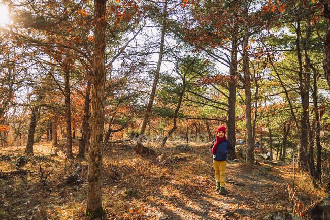 Мальчик прогуливается на свежем воздухе поздней осенью, Соединенные Штаты — стоковое фото