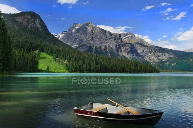Красивый пейзаж. природа, путешествия — стоковое фото