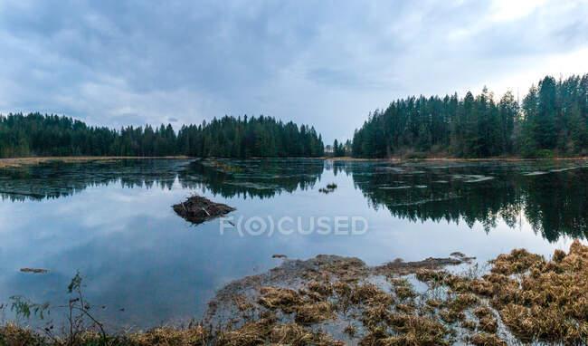 Сільський краєвид в озері (Канада). — стокове фото