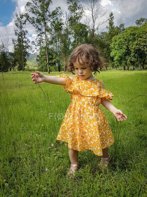 Девушка, стоящая в поле, играя с длинной травой, Бразилия — стоковое фото