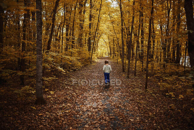 Boy walking along a footpath in the forest in early autumn, Stati Uniti — Foto stock
