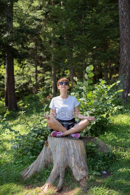 Женщина, сидящая на пне, медитирует, Босния и Герцеговина — стоковое фото