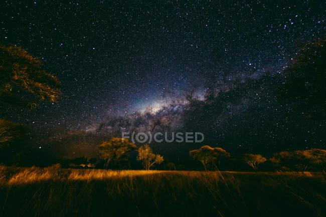 Vía Láctea cielo nocturno sobre llanuras africanas, Namibia - foto de stock