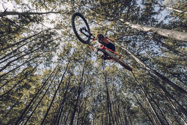 Vue de dessous du sportif saut à vélo dans la forêt — Photo de stock