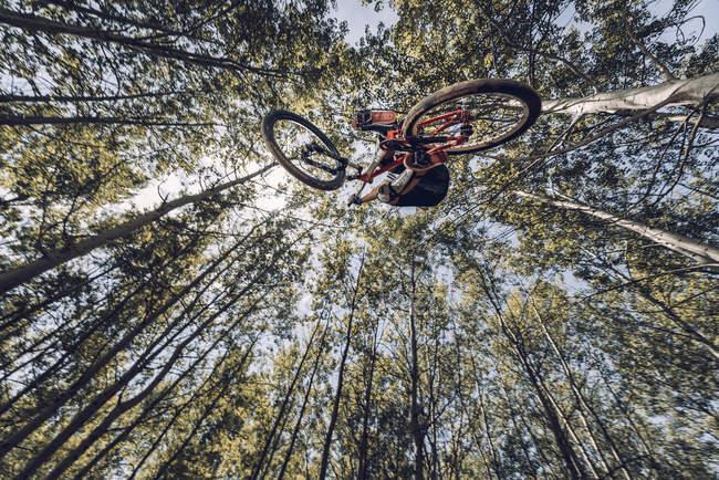 Вид снизу экстремального спортсмена, прыгающего с велосипеда в лесу — стоковое фото